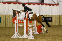BRC Area 16 Showjumping qualifiers